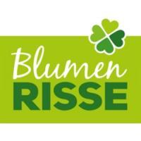 BLUMEN RISSE